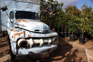 Clausen Nursery Truck