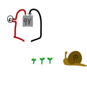 (figure 5) snail on the loose