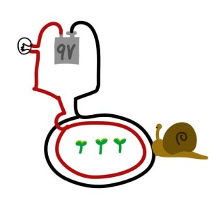 Electric Snail Fence