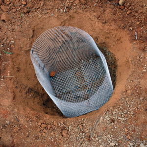 Easy to make gopher cage