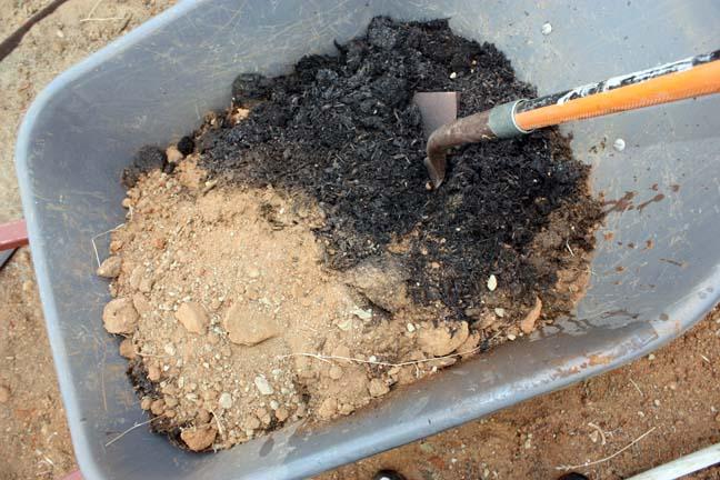 Best planting technique 7 important steps for Is soil a mixture