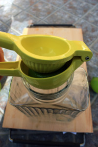 Best lemon lime juicer
