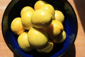 Bowel of Meyer Lemons