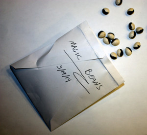 Free seed packet