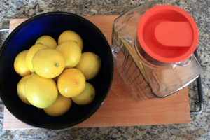 Meyer Lemons and container