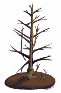 Osborne. Guide tree pruning.