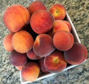 Home Peach harvest