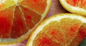 Growing The Tarocco Blood Orange